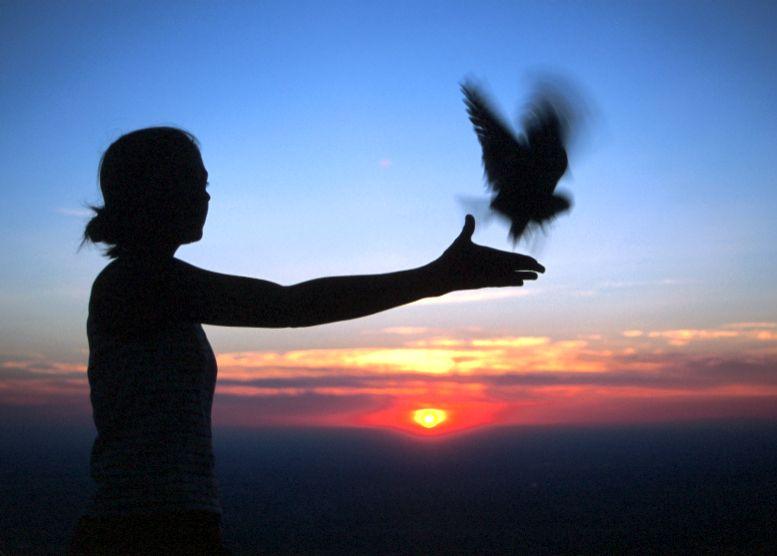 AMKE-sunset-release